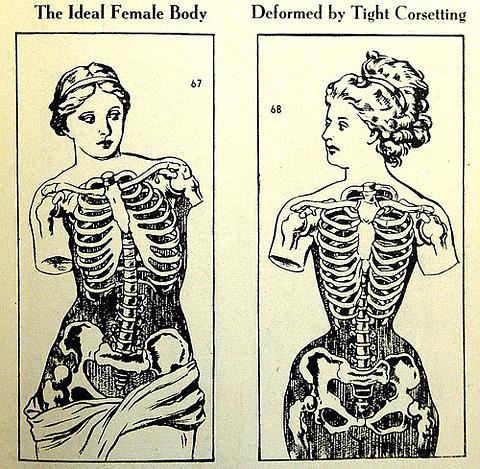 Resultado de imagen para uso de corse